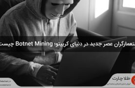what-is-botnet-mining